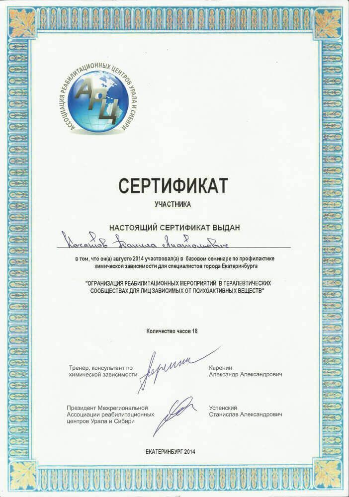 Сертификат Кочетова Д. А. - участие в семинаре по прафилактики химической зависимости
