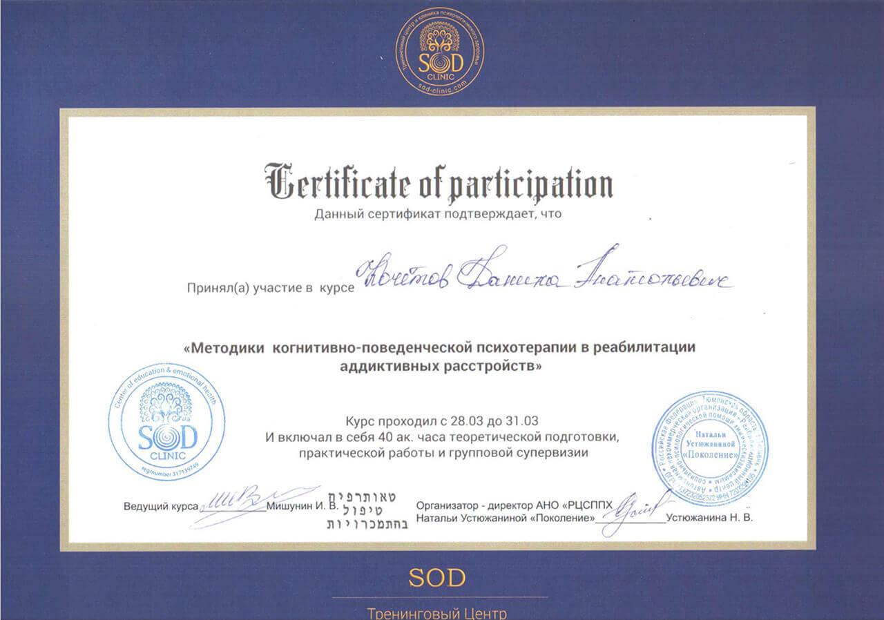 Сертификат Кочетова Д. А. - прохождение курса Методики когнетивно-поведенченской психотерапии в реабилитации адаптивных устройст