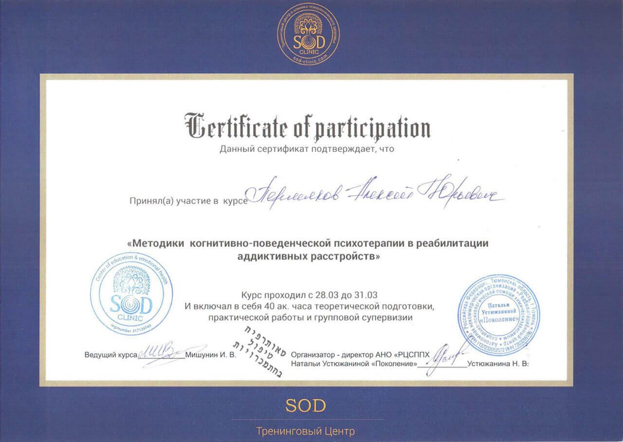 Сертификат Пермякова А. Ю. - прохождение курса Методики когнетивно-поведенченской психотерапии в реабилитации адаптивных устройст