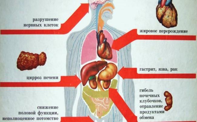 Влияния алкоголя на организм
